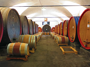 Visit the caves and enjoy a wine tasting