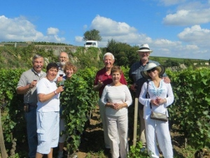 Savoir Vivre winetasting in the vineyard
